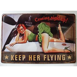 PLAQUE METAL AVION/NAKED FANNY/RELIEF/
