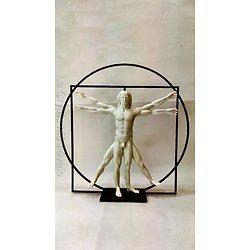 L'HOMME DE VITRUVE COULEUR MARBRE/LEONARD DE VINCI/ART