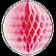 Pétunia - Boule alvéolée Médium // Rose bonbon