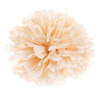 Plumette - Pompon Small // Pêche