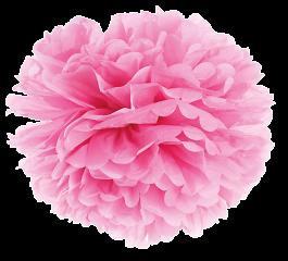 Plumette - Pompon Small // Rose