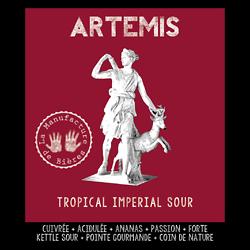Carton 6x75cL - Artémis Imperial Tropical Sour