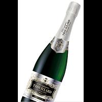 Champagne Brut Extra Sélection Trouillard