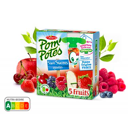 MATERNE - Pom'Potes 5 Fruits Sans Sucres Ajoutés