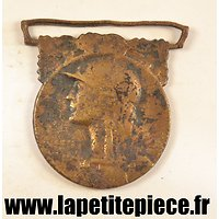 Médaille de la Grande Guerre 1914 - 1918 pièce de terrain