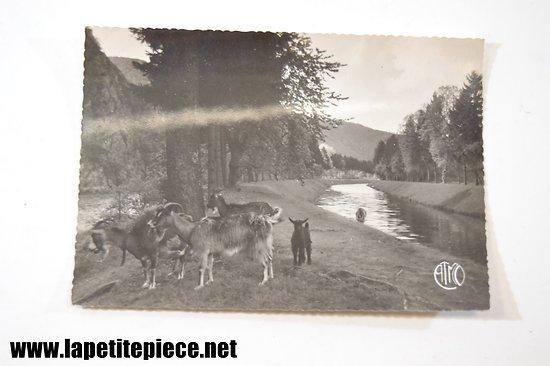 Laifour - les Ardennes Françaises le Canal 64B