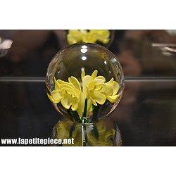 Sulfure décor floral