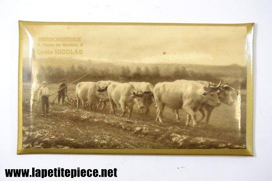 Glacoïde publicitaire Herboristerie Lucie Nicolas à Charleville (Ardennes)