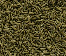 Sticks d'algue