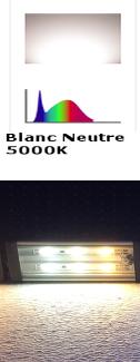 Blanc_Neutre.png