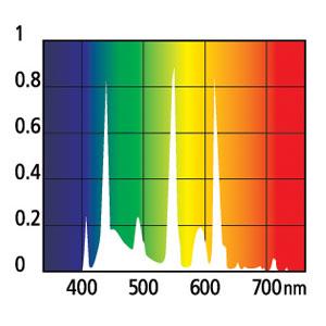 Spectre_freshwater.jpg
