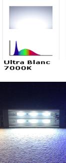 Ultra_Blanc.png
