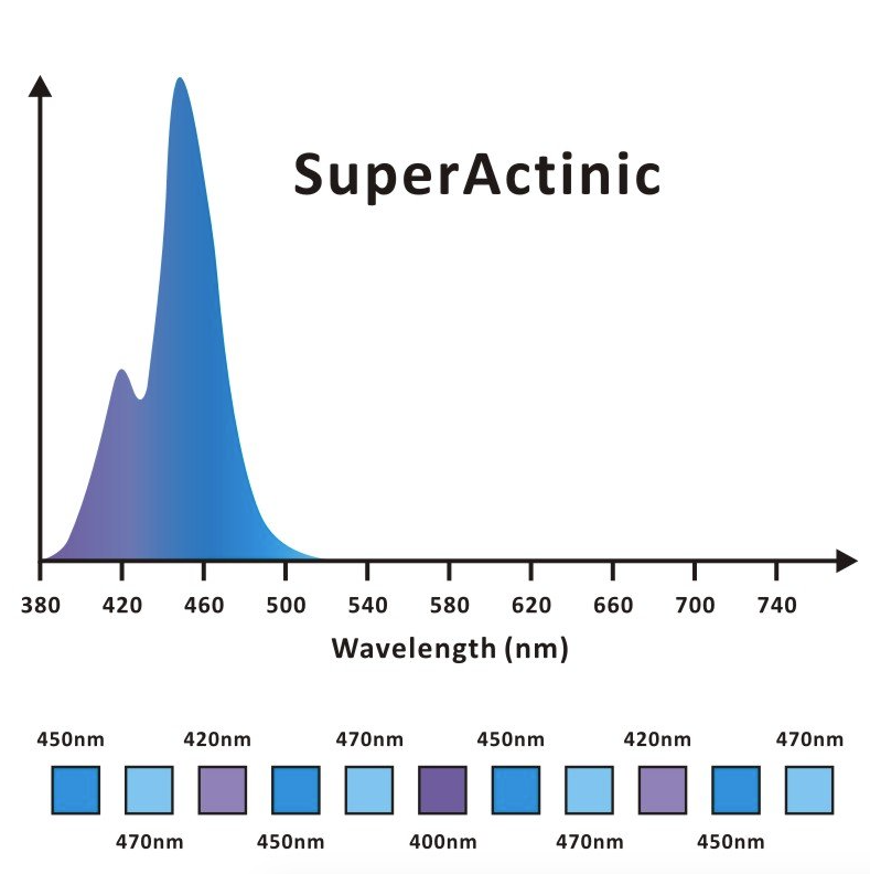 Vita_super_actinic.png