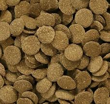 Chips d'algue