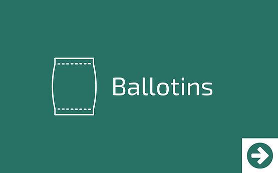 Offrez des ballotins - Epicerie locale à Idron les Morandises