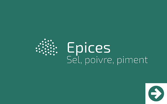 Epices au Vrac - Sel, poivre, piments du terroir - Epicerie les Morandises à Idron.