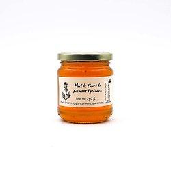 Miel de fleurs du piémont Pyrénéen