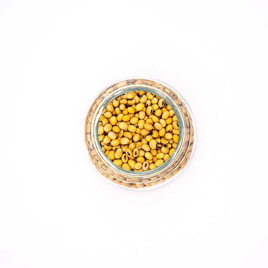 Soja jaune BIO