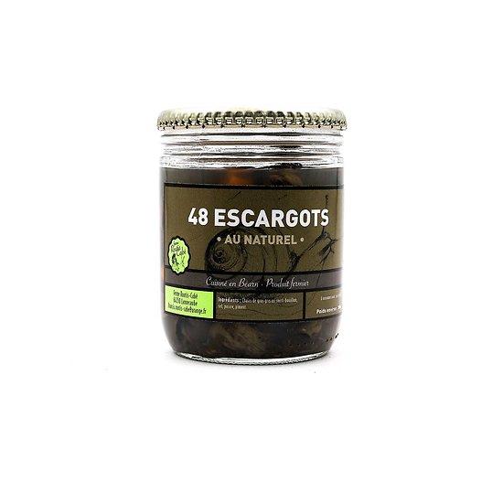 Escargots au naturel par 48