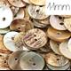 10 boutons ronds en nacre véritable 11mm