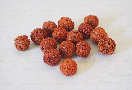 5, 10 ou 15 perles de Rudraksha pour bracelet mala indien, perles ethniques en graine 14mm