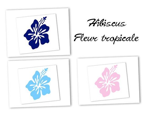 Flex thermocollant hibiscus - 3 couleurs