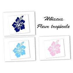 Flex thermocollant hibiscus - 3 couleurs