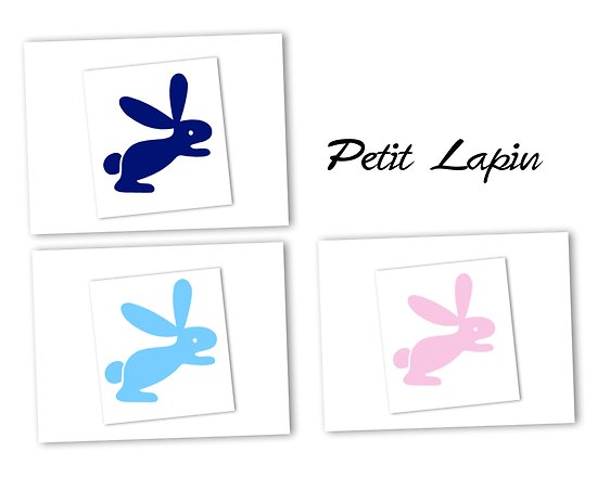 Flex thermocollant lapin - 3 couleurs