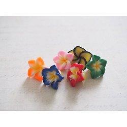 5 perles fleur de frangipanier en pâte polymère multicolore 15x10mm