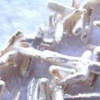 2 perles d'eau douce branche 15x20mm / 22x30mm