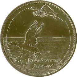 Baie de Somme 4