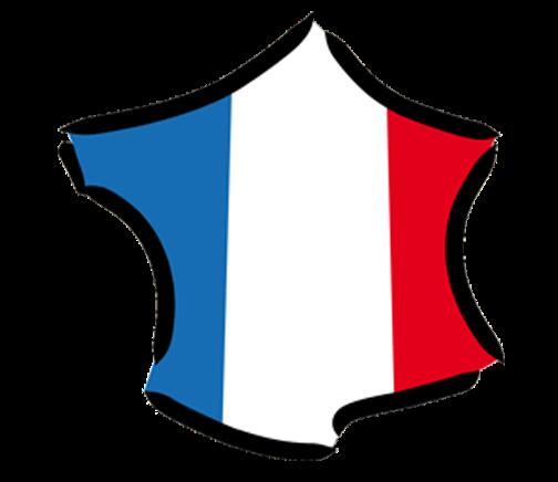 jachete-local-france2_-_Copie_2.png