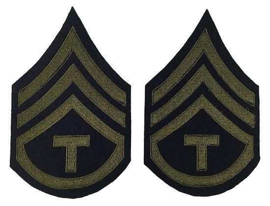 TECHNICIAN STAFF SERGEANT (TSSG)