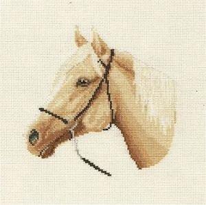 Chevaux, ânes et poneys