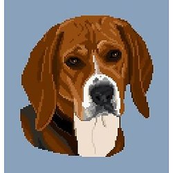 Beagle diagramme couleur .pdf