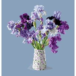 Bouquet d'iris diagramme couleur .pdf