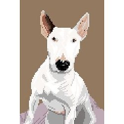 Bull terrier IV diagramme couleur
