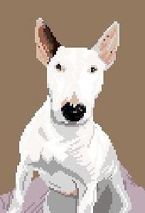 Bull terrier IV diagramme noir et blanc