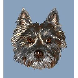 Cairn terrier II diagramme couleur