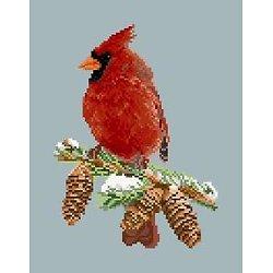 Cardinal diagramme couleur