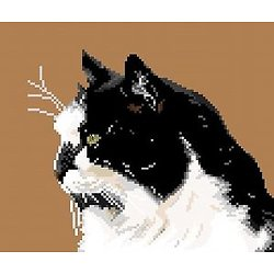 Chat noir et blanc diagramme noir et blanc
