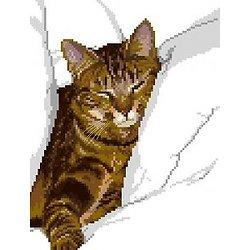 Chat tigré II diagramme noir et blanc