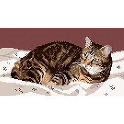 Chat tigré III diagramme noir et blanc