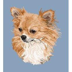 Chihuahua à poils longs II diagramme noir et blanc