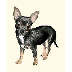 Chihuahua diagramme noir et blanc