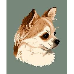 Chihuahua II diagramme couleur .pdf