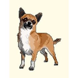 Chihuahua III diagramme couleur .pdf