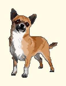 Chihuahua III diagramme noir et blanc