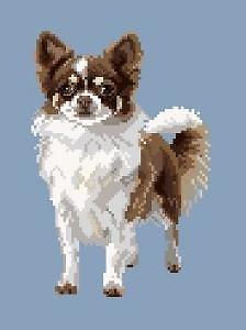 Chihuahua IV diagramme noir et blanc