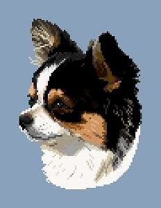 Chihuahua V diagramme noir et blanc